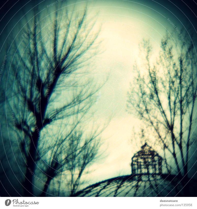 no place to hide. Baum Ruine Gebäude alt dunkel gruselig Verfall Kuppeldach verfallen Diana+ Lomografie baufällig Bildausschnitt Detailaufnahme Silhouette