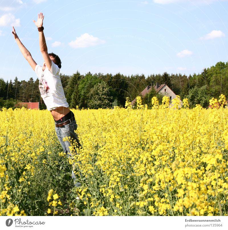 Der letzte Sprung ins Meer Rapsöl Sommer Feld Blume springen Haus grün Wolken Frühling Freude Freiheit blau Himmel Schönes Wetter