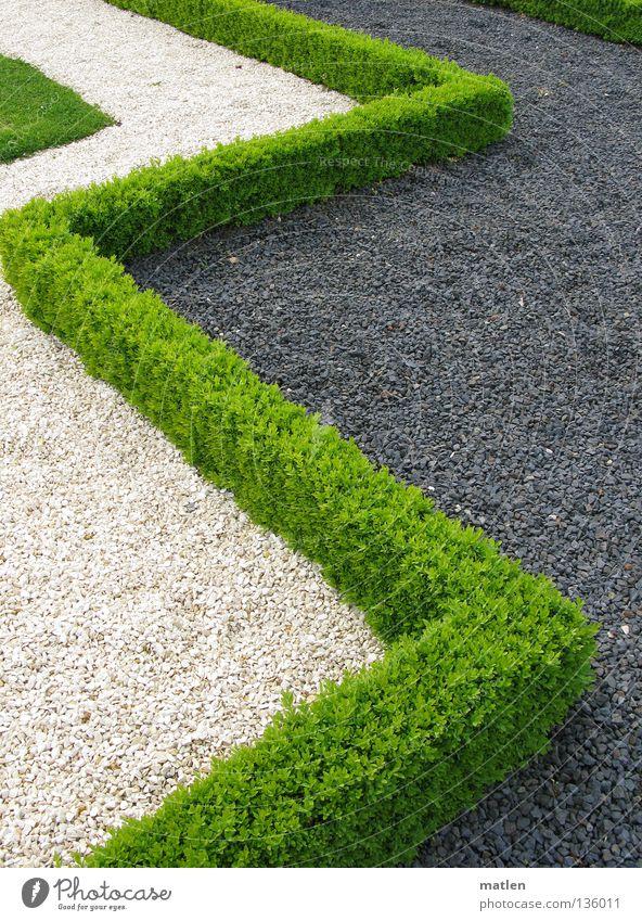 Grenzen Garten Park grau grün weiß Kies Hecke Ecke Buxbaum Zickzack Außenaufnahme