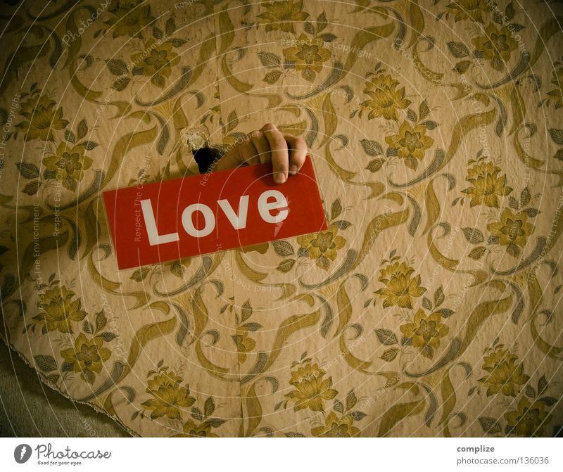 love in the 50´s alt Blume rot Liebe Haus Einsamkeit Wege & Pfade Raum Angst Wohnung Design retro Schriftzeichen kaputt Bodenbelag Baustelle