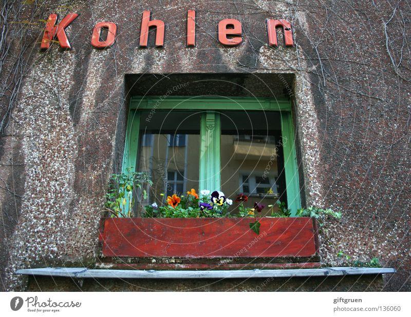 Koh le [f.]: [meist Pl.; ugs.] Geld; die ~n verdienen; K. machen einbringen Arbeit & Erwerbstätigkeit heizen Haus Fenster Blume Blumenkasten Aufschrift