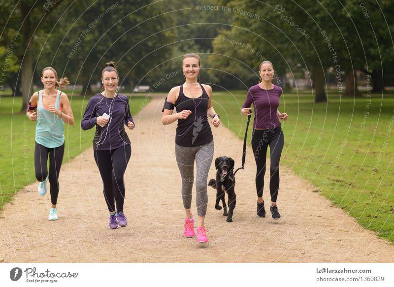 Vier gesunde junge Frauen, die im Park rütteln Hund Sommer Erholung Erwachsene Sport Lifestyle Menschengruppe Zusammensein Freundschaft Aktion Lächeln Fitness