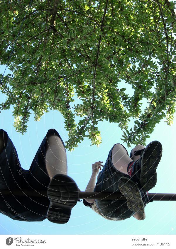 schuhsohlen Himmel Baum Säugetier himmelblau Blattgrün