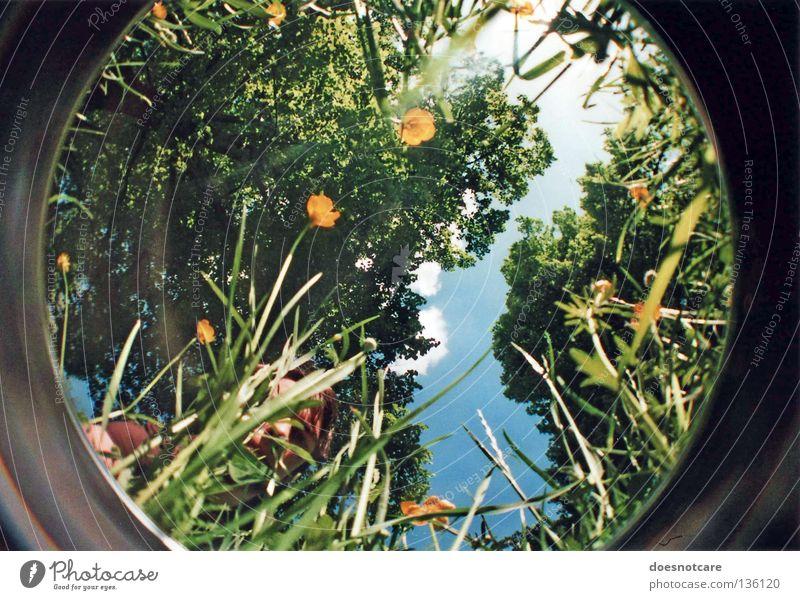 on what it means to grow. Sommer Mensch Mann Erwachsene Umwelt Natur Pflanze Himmel Baum Blume Wachstum grün Reifezeit Lomografie Fischauge Versteck verstecken