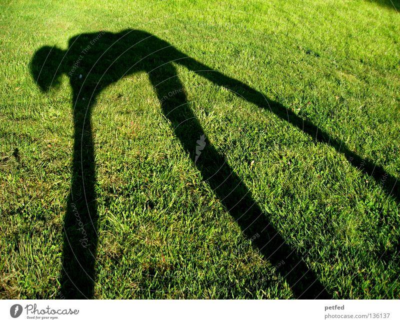 Spiderman's Schatten Mensch Natur grün Sonne Freude schwarz Leben Wiese oben Gras Beine lustig Arme unten lang obskur