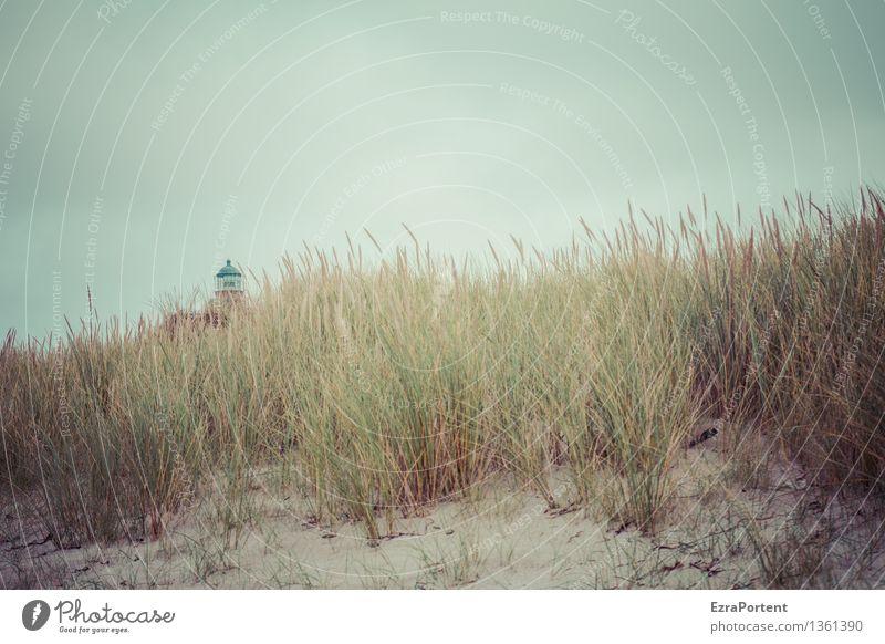lütt Ferien & Urlaub & Reisen Tourismus Ausflug Umwelt Natur Landschaft Himmel Herbst Klima Klimawandel Wetter Pflanze Gras Küste Strand Ostsee Leuchtturm