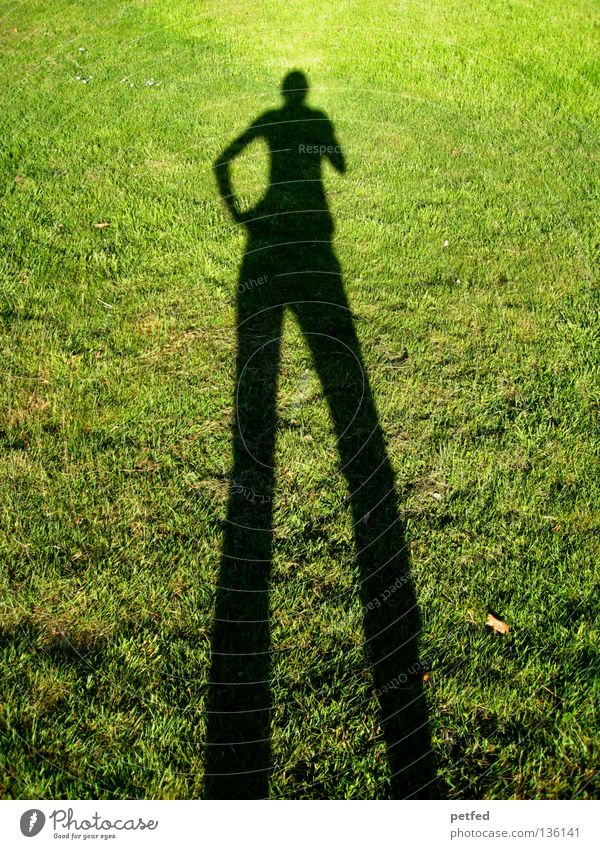Hey Baby Wiese Gras Licht grün schwarz biegen bücken unten schmal lang obskur Mensch Schatten Sonne Freude lustig Natur Leben Fun Beine Arme oben Außenaufnahme
