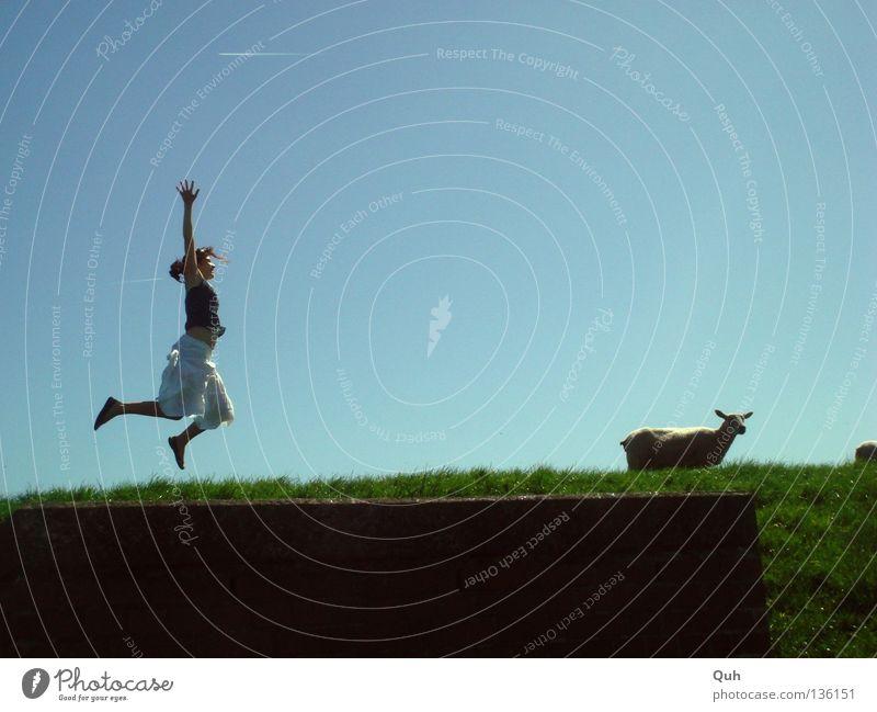 Mädchen springen anders ... Frau Schaf Deich Gras Hügel Wiese hüpfen Sommer Tier Mensch Rasen Weide Lamm Hopsen Arme Verkehrswege blau Himmel lustig Freude