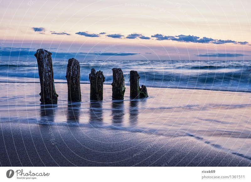 Ostseeküste Erholung Ferien & Urlaub & Reisen Sonne Strand Meer Natur Landschaft Wasser Wolken Küste alt Romantik Idylle ruhig Tourismus Buhne Himmel