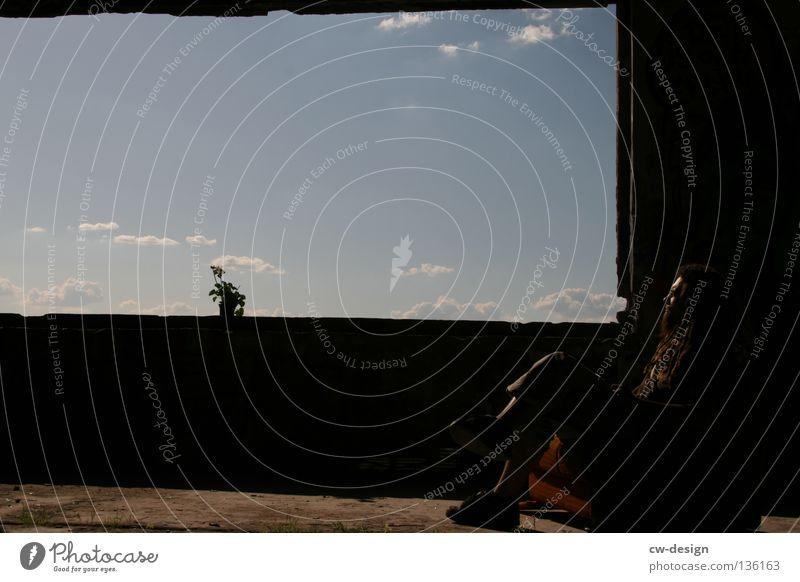 AM FENSTER pt.V Fenster Wolken Blume Pflanze Blumentopf Topfpflanze Stil Lifestyle Leben live dunkel schwarz weiß mehrfarbig Sonnenstrahlen Lichteinfall Beton