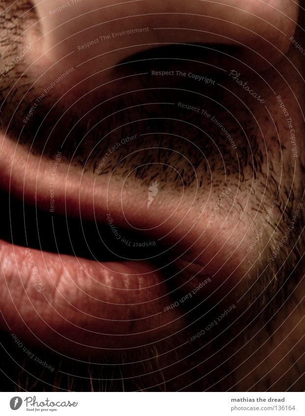 SCHNUTE III Mann rot Gesicht rosa Wildtier Mund natürlich maskulin Nase authentisch Spitze weich Lippen Falte lang