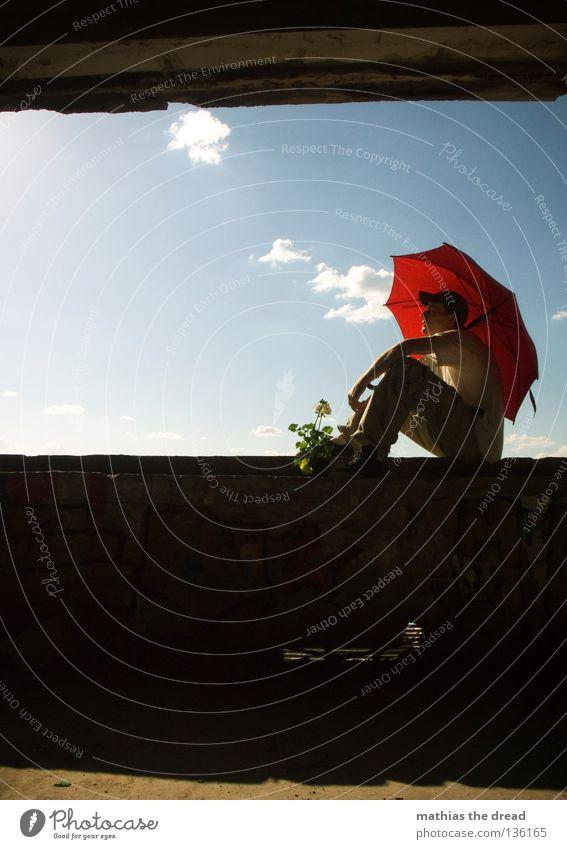 WINDOW III schön Himmel weiß Blume blau Pflanze rot Sommer Haus schwarz Wolken Einsamkeit Leben dunkel Erholung Stil