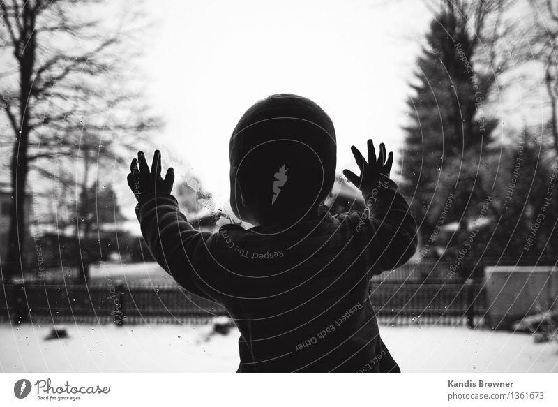 Baby schaut aus Fensterscheibe im Winter Mensch Kind Hand schwarz kalt Schnee Junge Glück klein Lifestyle Wohnung maskulin Zufriedenheit Kindheit stehen