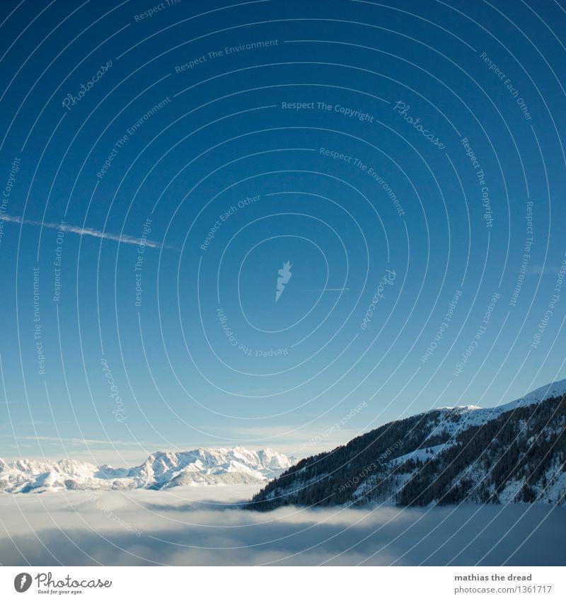 > 2000m Umwelt Natur Landschaft Himmel Wolken Winter Schönes Wetter Schnee Baum Wald Alpen Berge u. Gebirge Gipfel Gletscher Luftverkehr Flugzeug ästhetisch