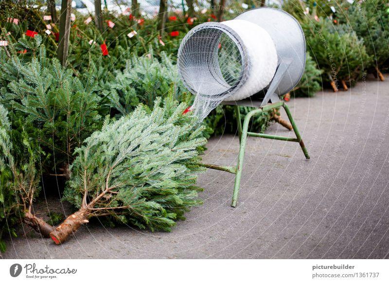Christbaumverkauf kaufen Innenarchitektur Weihnachten & Advent Baum Holz wählen Weihnachtsbaum Weihnachtbaum Farbfoto Außenaufnahme Menschenleer