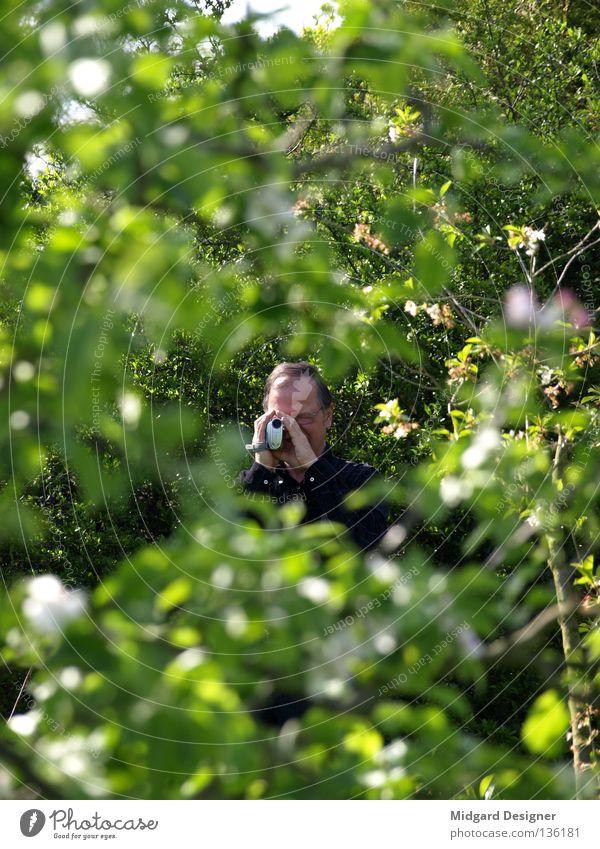 Observation Mensch Mann grün Baum Blatt Erwachsene maskulin beobachten Fotokamera Filmindustrie 45-60 Jahre geheimnisvoll Männlicher Senior verstecken Zweig Videokamera