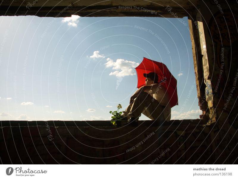 WINDOW IV schön Himmel weiß Blume blau Pflanze rot Sommer Haus schwarz Wolken Einsamkeit Leben dunkel Erholung Stil