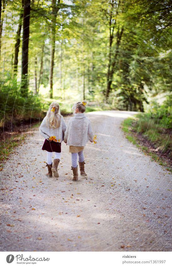 Herbstspaziergang Mensch feminin Kind Mädchen Geschwister Schwester Familie & Verwandtschaft Kindheit 2 3-8 Jahre Umwelt Natur Landschaft Schönes Wetter Wald