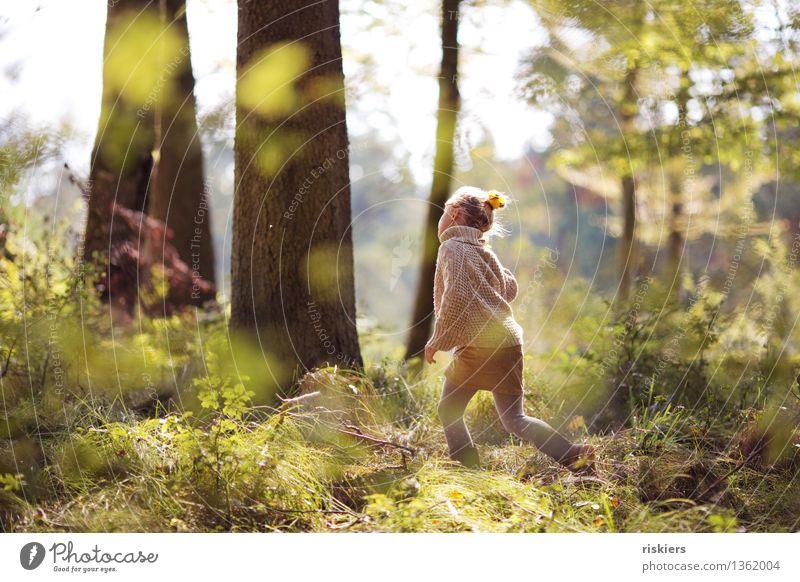 Waldkind Mensch Kind Erholung Freude Mädchen Umwelt Herbst natürlich feminin Glück Zufriedenheit leuchten frisch wandern Kindheit
