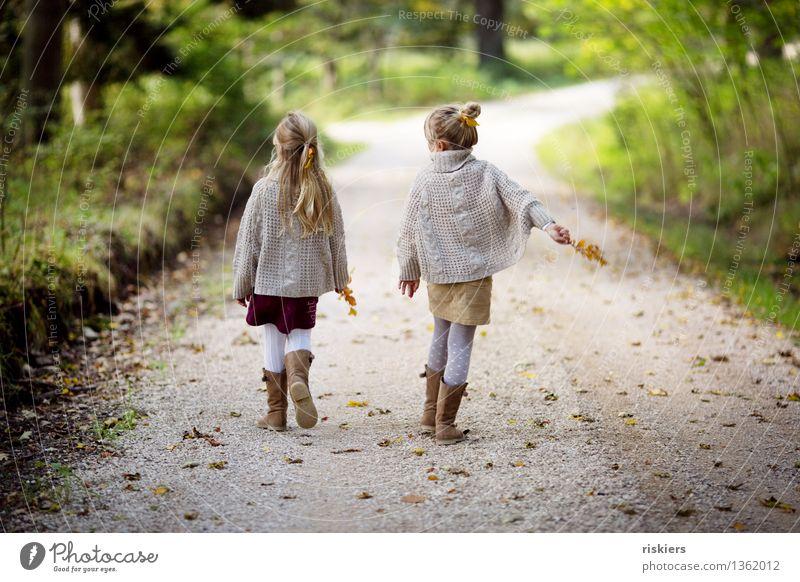 Herbstspaziergang Mensch feminin Kind Mädchen Geschwister Schwester Familie & Verwandtschaft Kindheit 2 3-8 Jahre Umwelt Natur Schönes Wetter Wald entdecken
