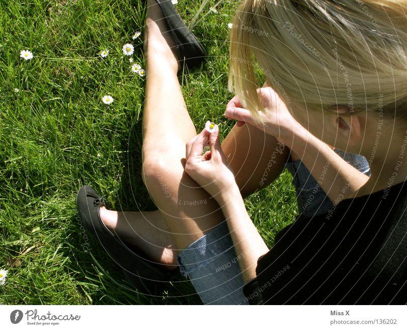 Auch ein Gänseblümchen lügt manchmal Farbfoto Außenaufnahme Frau Erwachsene Beine Frühling Blume Gras Blüte Wiese blond Denken träumen warten grün Liebeskummer