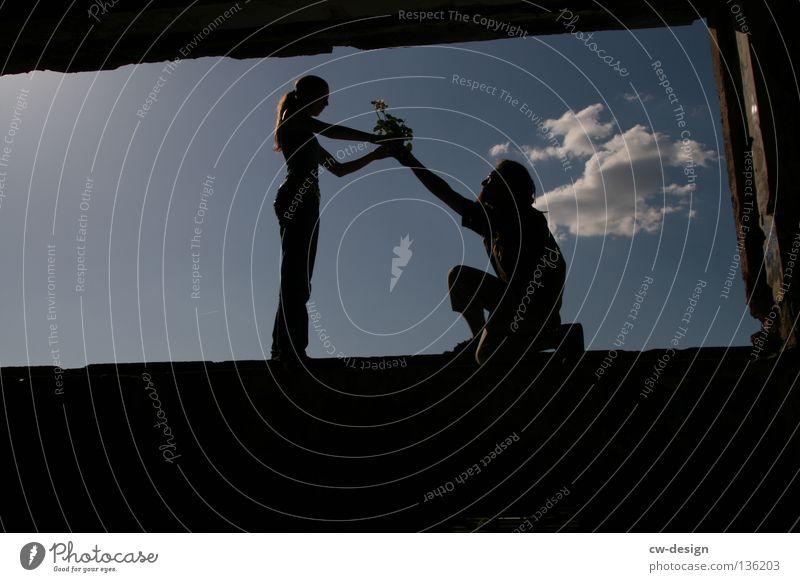 AM FENSTER pt.VI Fenster Wolken Blume Pflanze Blumentopf Topfpflanze Stil Mann Frau Zuneigung Liebe Freundschaft Freundlichkeit Valentinstag maskulin feminin
