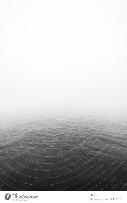 Ruhe Urelemente Wasser Himmel Herbst Wetter schlechtes Wetter Nebel Wellen Küste Meer See Fluss gruselig grau ruhig Traurigkeit Tod Einsamkeit Wasseroberfläche