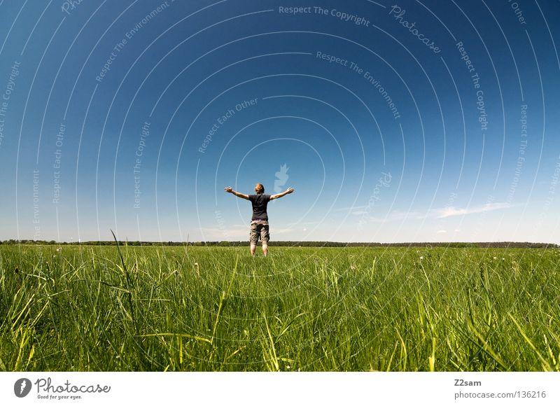 freiheit Mann Natur Jugendliche Himmel weiß grün blau Sommer ruhig Wolken Einsamkeit Ferne Farbe Erholung Wiese springen