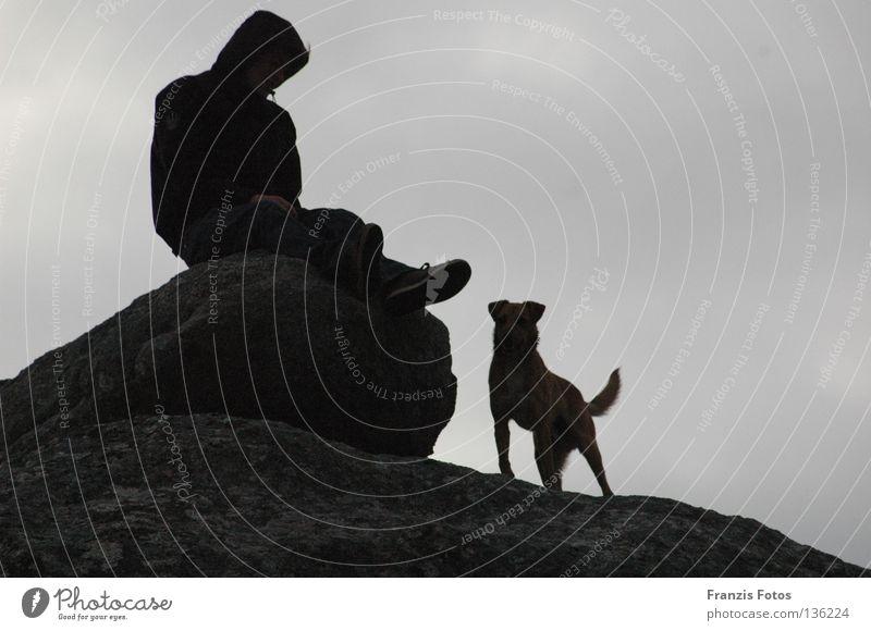Treue Ferien & Urlaub & Reisen Ferne Hund Denken Aussicht Vertrauen