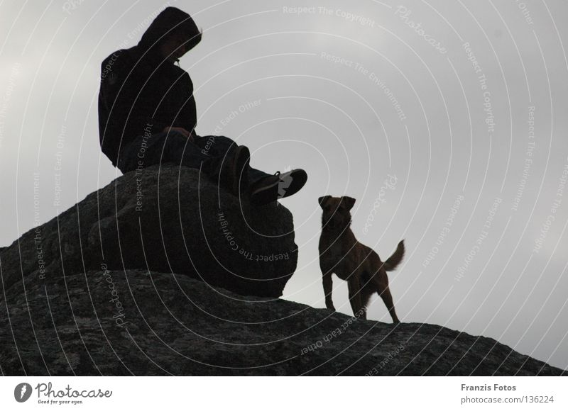Treue Hund Denken Silhouette Ferien & Urlaub & Reisen Ferne Vertrauen Schatten Schwarzweißfoto Aussicht