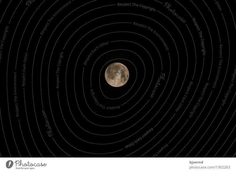 Mond über Kiel Himmel weiß schwarz grau Angst Sehnsucht Wolkenloser Himmel Sorge Nachthimmel Einigkeit Vollmond nur Himmel