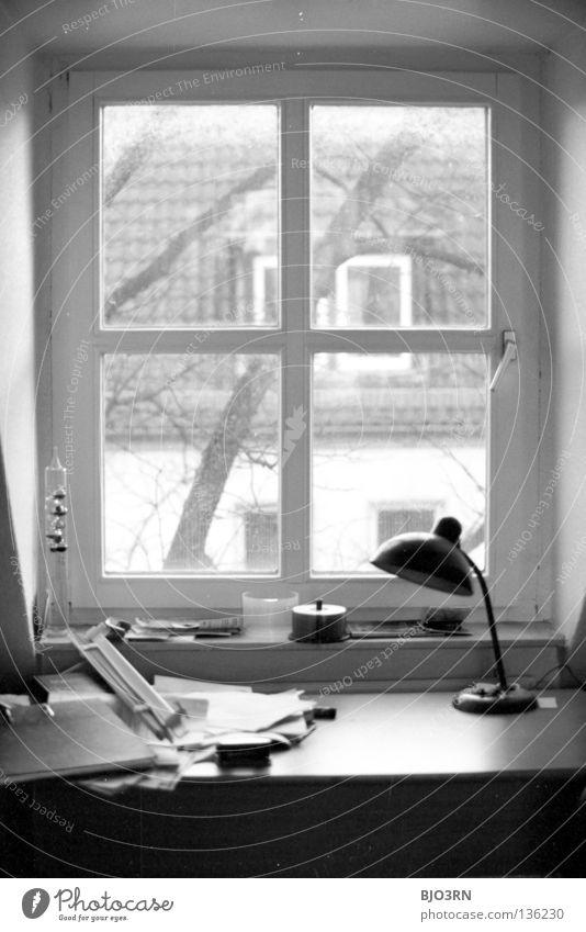 Jans Schreibtisch Baum Haus Fenster Holz Zusammensein Tisch Schreibtisch Baumstamm Rahmen Zettel vertikal unordentlich Hochformat