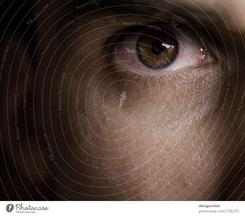 Burnout-Syndrom Mann rot Auge Zeit Arbeit & Erwerbstätigkeit Kraft Freizeit & Hobby leer Ende Stress Müdigkeit schäbig hart Blick Gefäße Erschöpfung