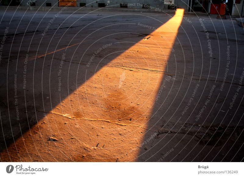 Der orange-goldene Teppich Sonne Abenddämmerung Himmelskörper & Weltall Abendsonne