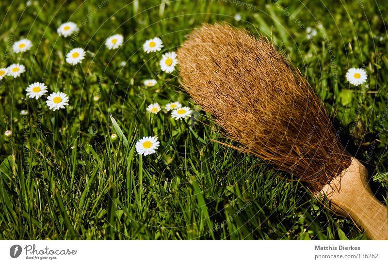 Besen Kehren Reinigen Putz Schatten Selbstportrait Staubwischen Wiese Gänseblümchen Frühjahrsputz Frühling aufräumen Arbeit & Erwerbstätigkeit Ordnung Wischen