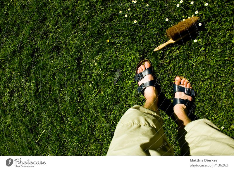 Was du heute kannst besorgen... Mensch Sommer Wiese Frühling Garten Arbeit & Erwerbstätigkeit Ordnung Häusliches Leben Flügel Reinigen Dinge Sauberkeit Rasen