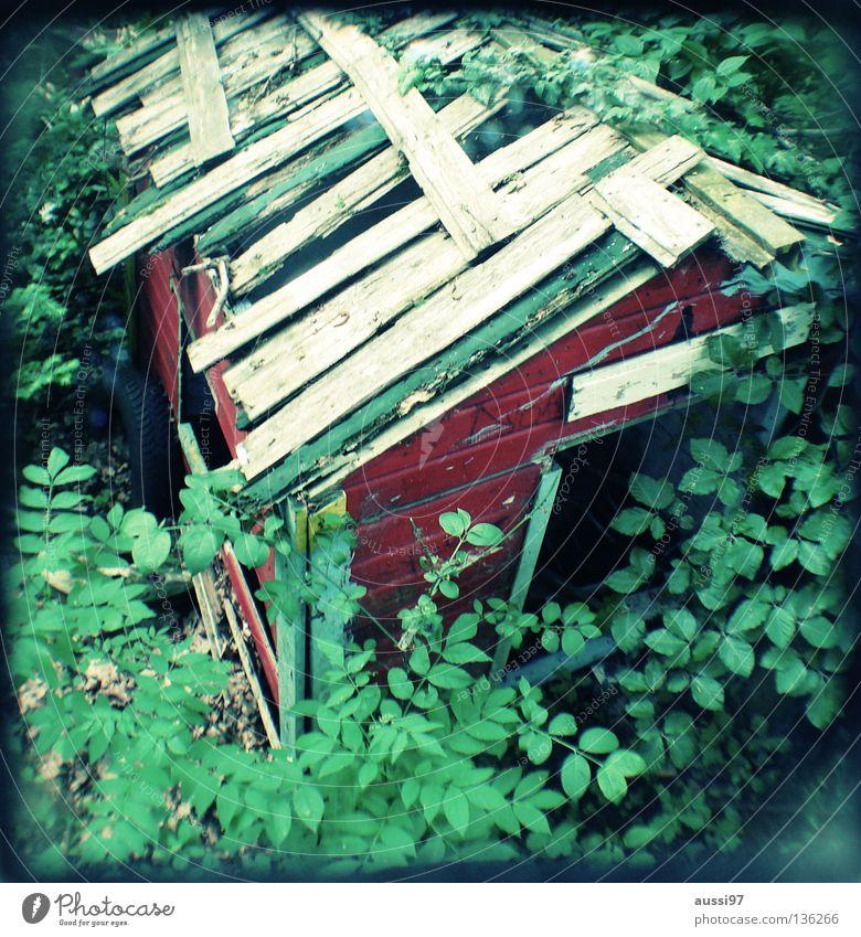 Laube verfallen Konzentration analog Hütte Am Rand Haus Reflexion & Spiegelung Raster Rahmen Sucher schemenhaft Brennpunkt Gartenhaus umrandet Lichtschacht