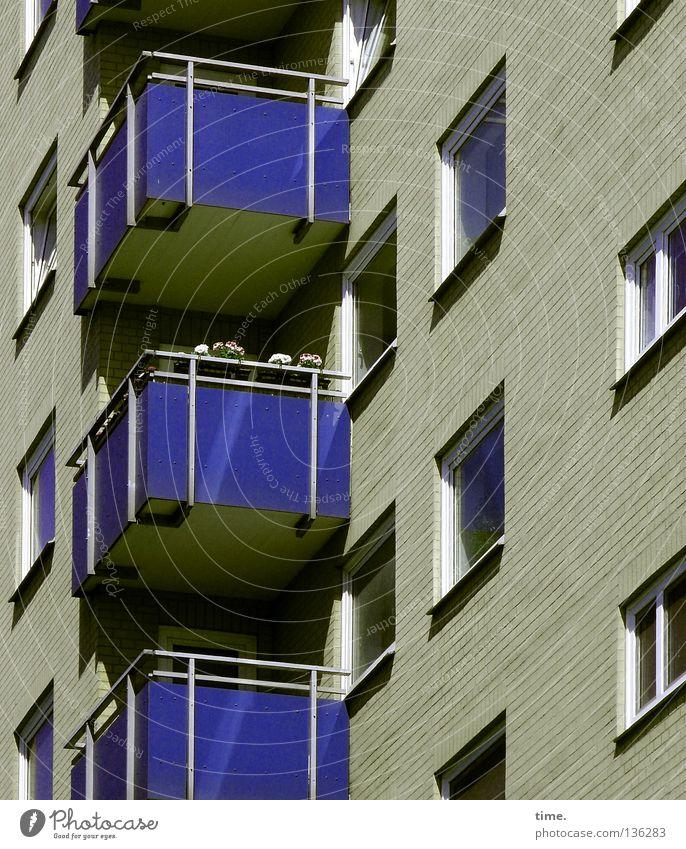 Freizeitkörbchen? Lukas nickt blau Haus Erholung Fenster Mauer Wohnung Fassade Freizeit & Hobby Schönes Wetter beobachten Balkon diagonal Loch Langeweile vertikal Symmetrie
