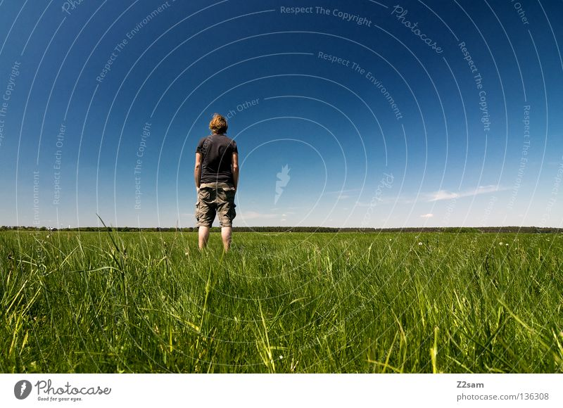 chillout sunday - aussicht Mann Natur Jugendliche Himmel weiß grün blau Sommer ruhig Ferne Farbe Erholung Wiese springen Stil Gras
