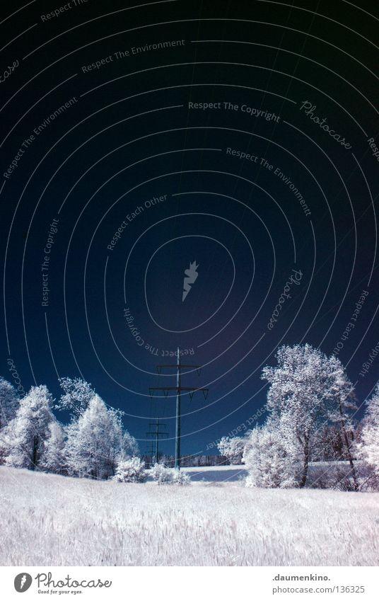 strom Wiese Gras Baum Personenzug Infrarotaufnahme fremd weiß Ferien & Urlaub & Reisen träumen ungewiss traumhaft Farbinfrarot außergewöhnlich Wolken