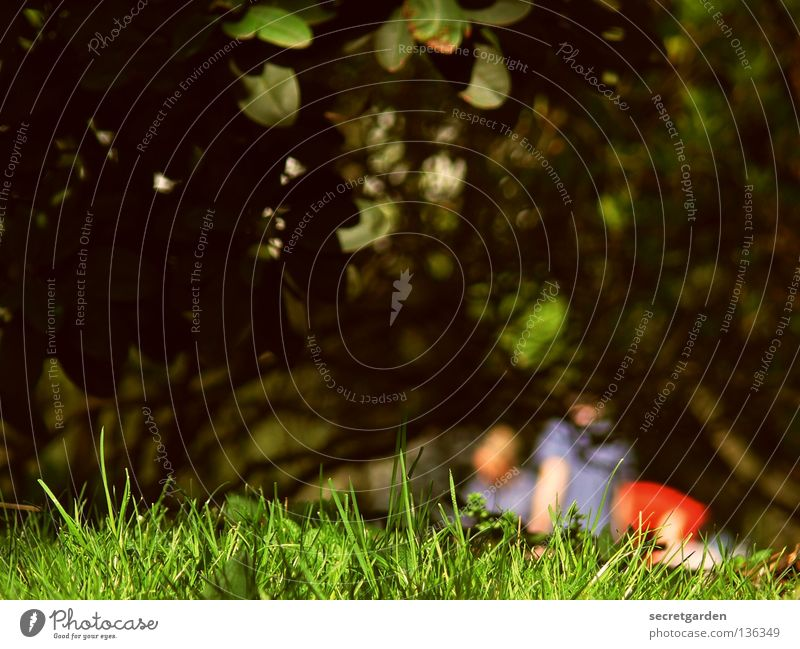 //spannerperspektive// Sommer Frühling dunkel mehrfarbig Gras Sträucher Luke Ferne Idylle Picknick heiß Freundschaft Freizeit & Hobby Sonntag Samstag Wochenende