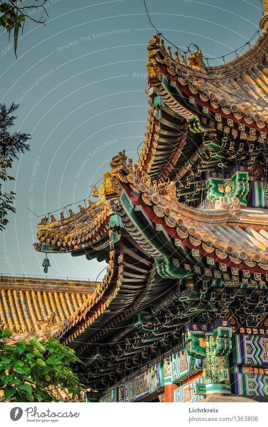 Yonghe-Tempel Dach Wolkenloser Himmel Schönes Wetter Baum Peking China Asien Hauptstadt Altstadt Menschenleer Kirche Palast Bauwerk Gebäude Architektur Fassade