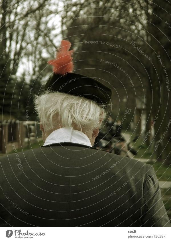 rote feder Mann maskulin Mütze Rückseite Hinterkopf weiß weißhaarig Anzug Allee Baum Verkehrswege Bekleidung Mensch Hut Rücken rückwärts Haare & Frisuren alt