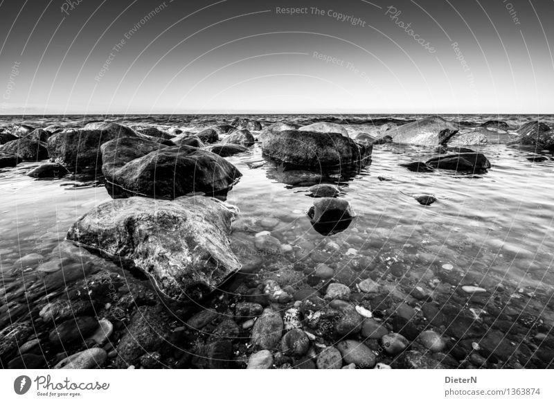 Steinig Wasser Himmel Wolkenloser Himmel Wetter schlechtes Wetter Küste Ostsee Meer grau schwarz weiß Felsen Horizont Schwarzweißfoto Außenaufnahme Menschenleer
