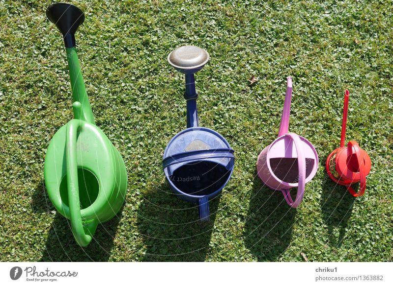 """Aufgeräumt 2 Werkzeug Natur Gras Garten Arbeit & Erwerbstätigkeit Erholung retro fleißig diszipliniert Ordnungsliebe """"Gartenarbeit Herbstarbeit Gartengeräte"""
