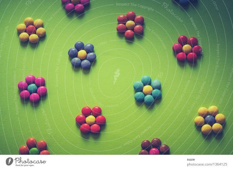 Esst mehr Blumen! grün Blüte Frühling Wiese lustig Hintergrundbild Lebensmittel Geburtstag Ernährung Kreativität Idee süß Zeichen Ostern Symbole & Metaphern