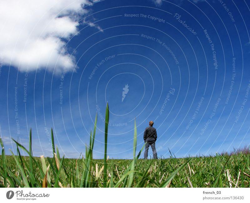 Ausblick im Frühjahr IV Mensch weiß See Denken gesichtslos maskulin Hand zyan Wolken schlechtes Wetter Froschperspektive Gras Wiese grün Halm Stroh stehen