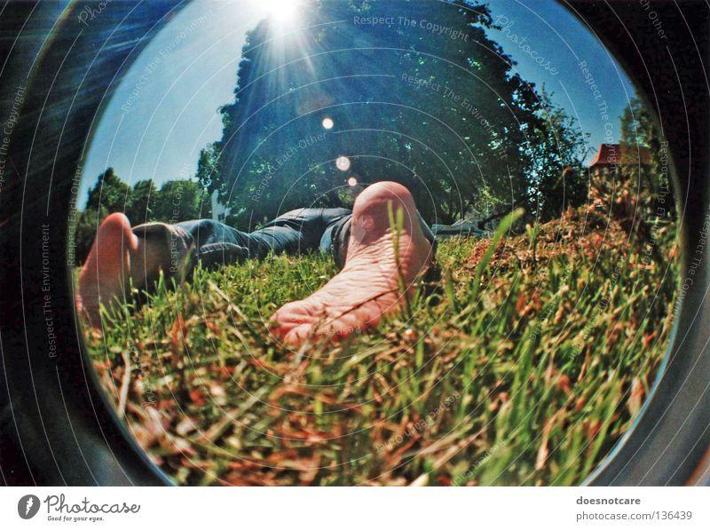 lying in the green grass... Baum Sonne Sommer Erholung Wiese Fuß Fischauge schlafen Blendenfleck sommerlich Fußsohle