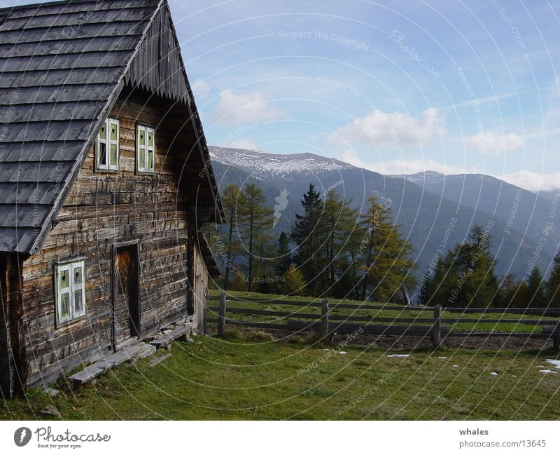 Hütte Wald Baum Berge u. Gebirge Landschaft Freiheit Natur