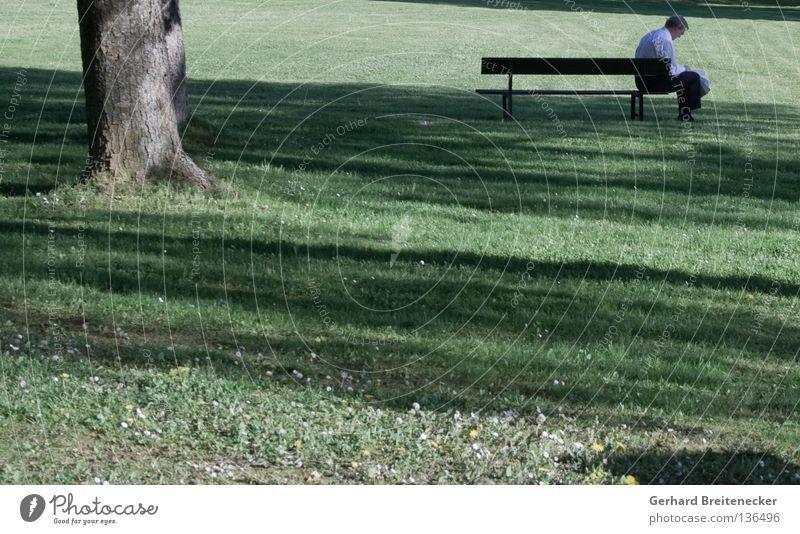 Broken Banker Mann grün Sommer Baum Erholung Wiese Wärme Gras Denken Park Arbeit & Erwerbstätigkeit sitzen Trauer Bank Physik Beruf